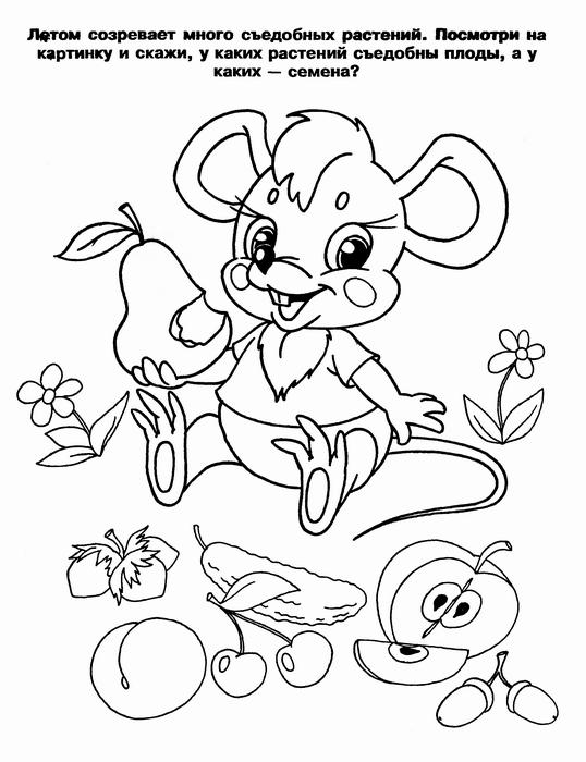 Раскраска Яблоки-груши   Riscos