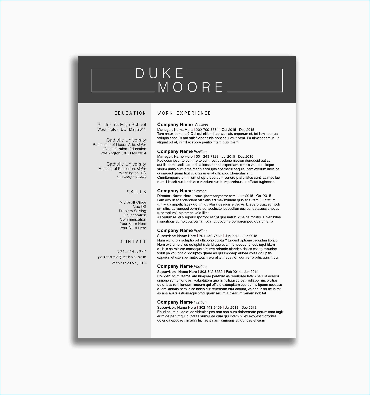 9 Resume Profile Examples For Server Check More At Https Www Ortelle Org Resume Profile Examples For Server Kurikulum Tips Mardi Gras