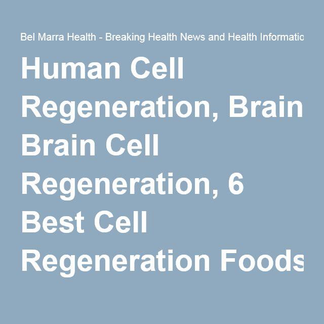 Human Cell Regeneration, Brain Cell Regeneration, 6 Best Cell
