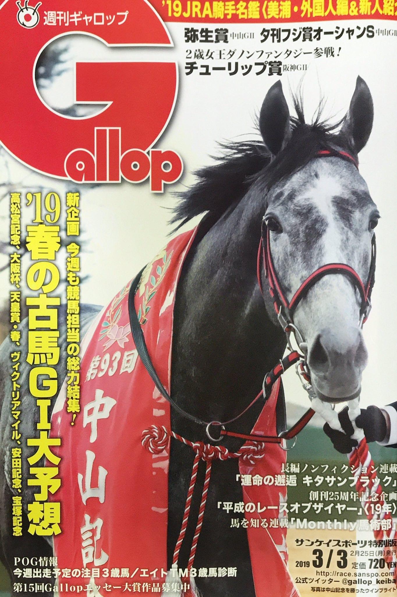 pin by fukasaku on horse horses animals racing