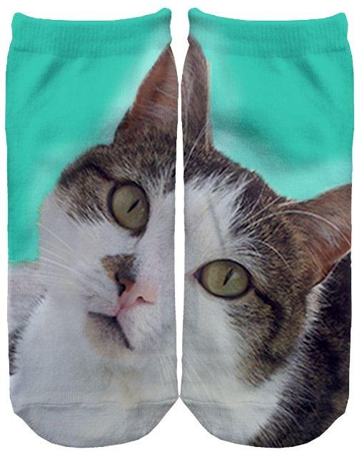 #meow ?