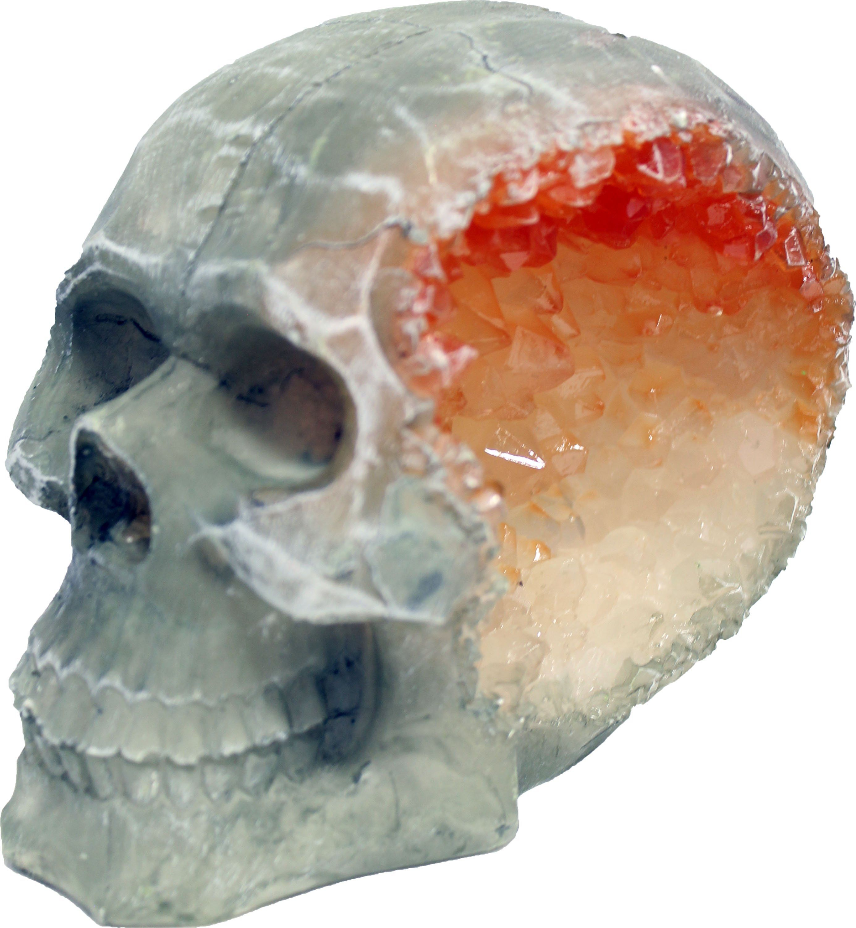 ff564e362736 Blue Ribbon Pet Products-Exotic Environments Skull Geode Stone Small ...