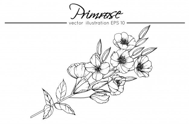 Primrose In 2020 Violet Flower Tattoos Birth Flower Tattoos Violet Tattoo