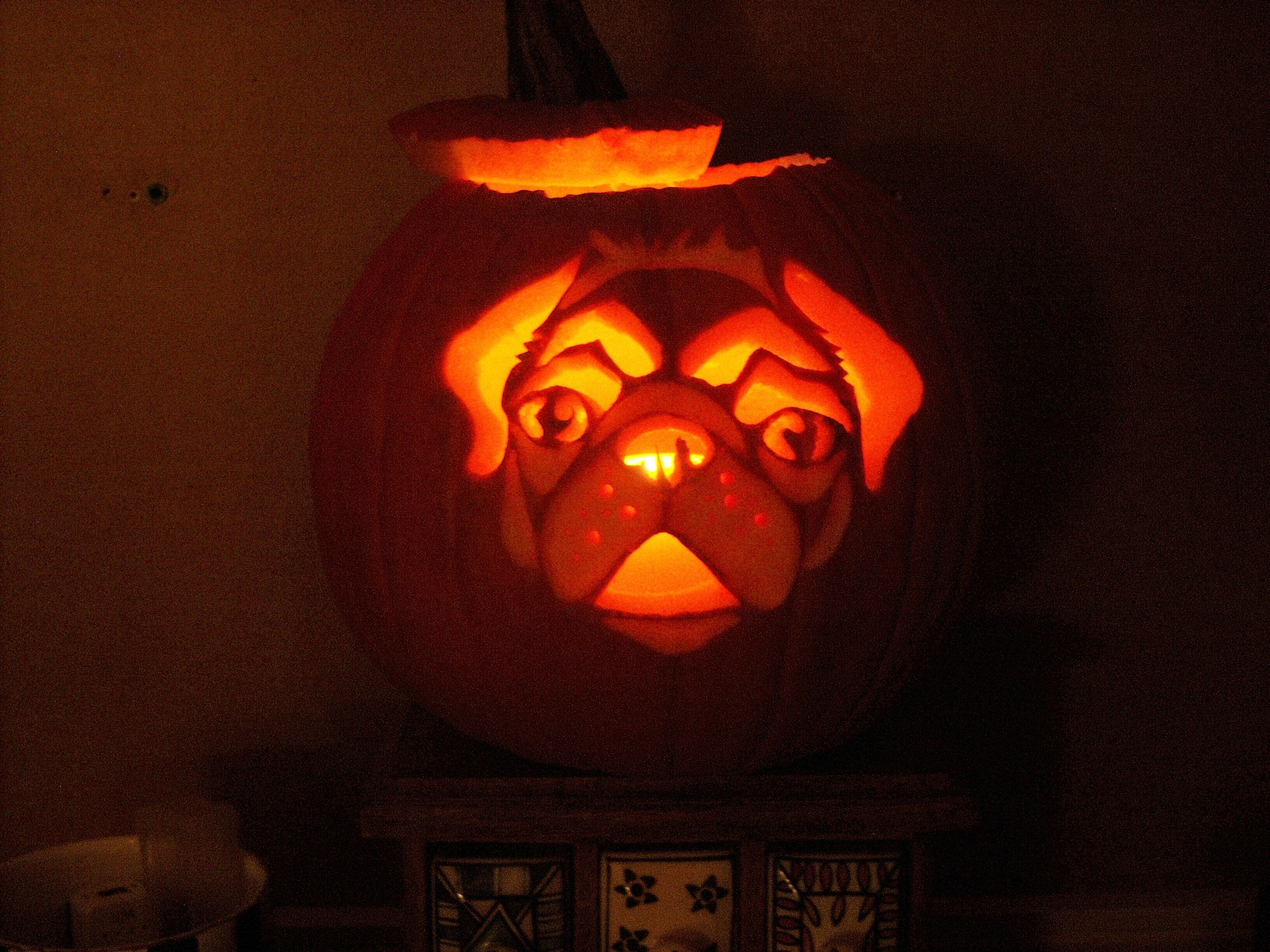 Puggy Happy Halloween..I would carve a pumkin if I could get this ...