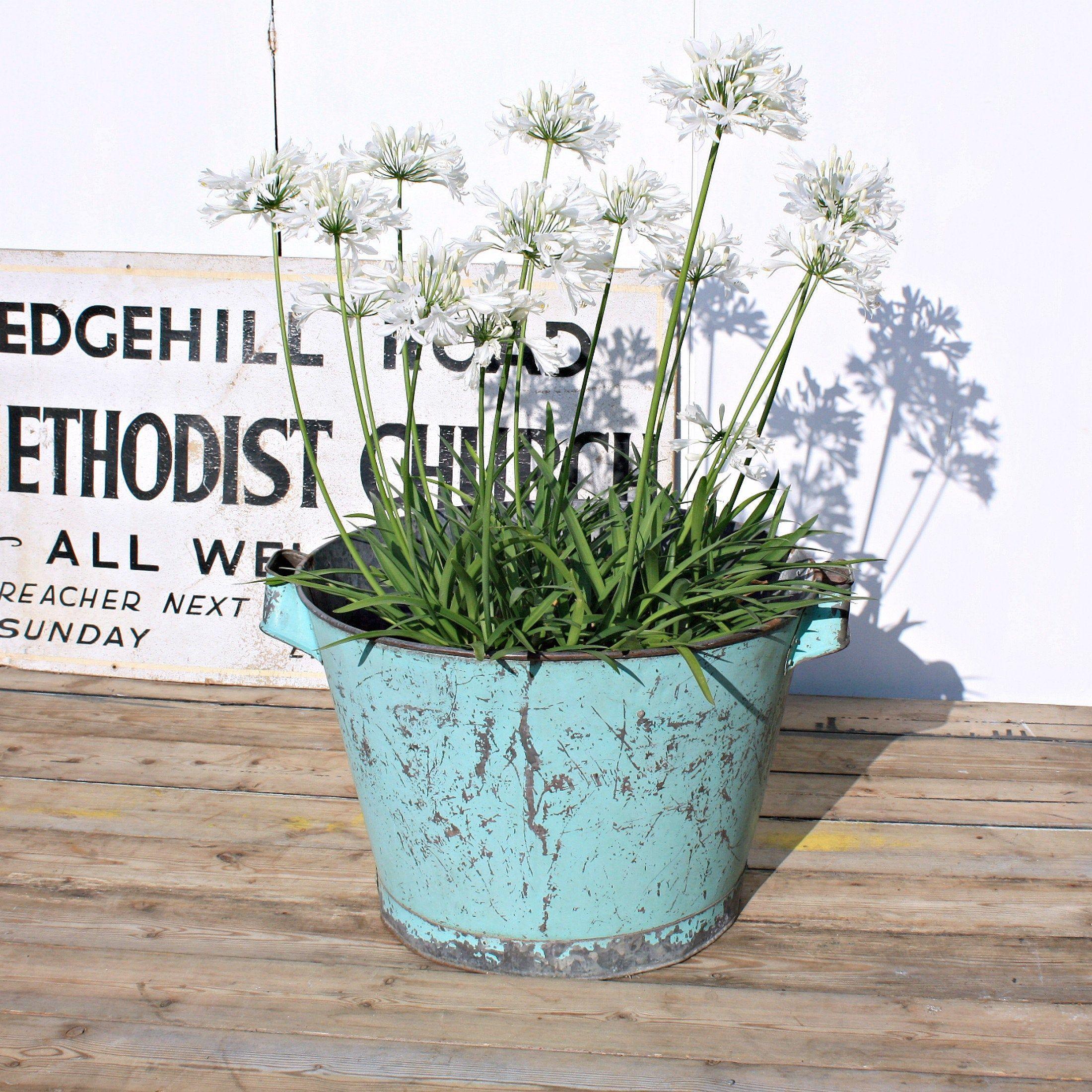 Extra Large Zinc Vintage Garden Planter Green Chippy 400 x 300