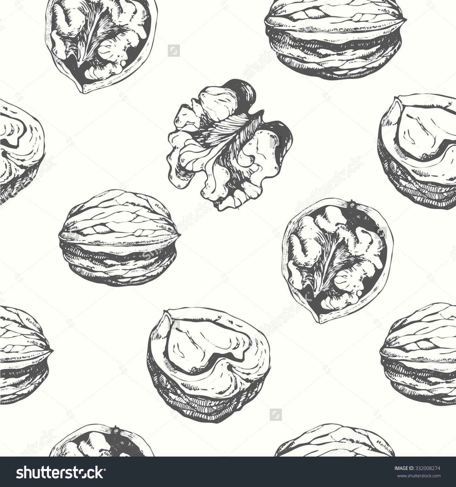 Hand Drawn Sketch Of Walnuts Seamless Nature Background Fresh
