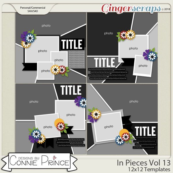 In Pieces Volume 13 - 12x12 Temps (CU Ok) by Connie Prince