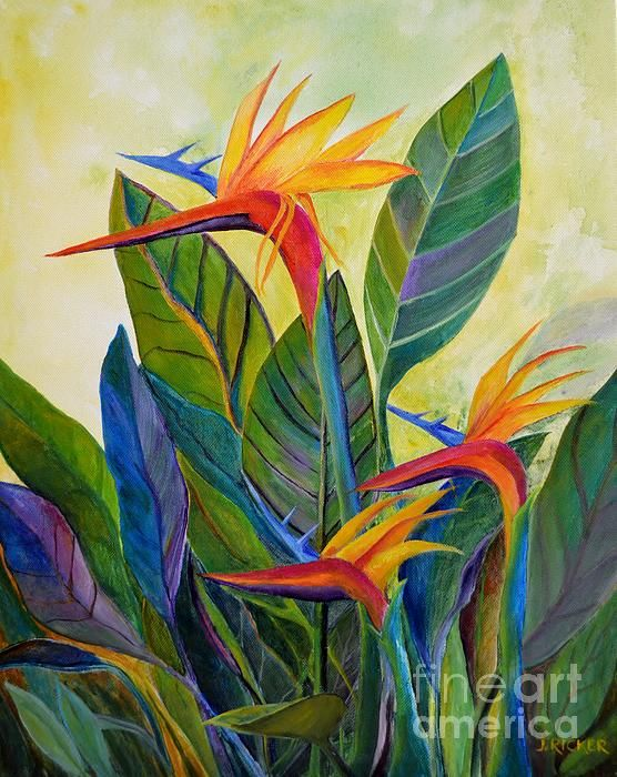 Birds Of Paradise By Jane Ricker Colorful Art Art Painting Flower Art