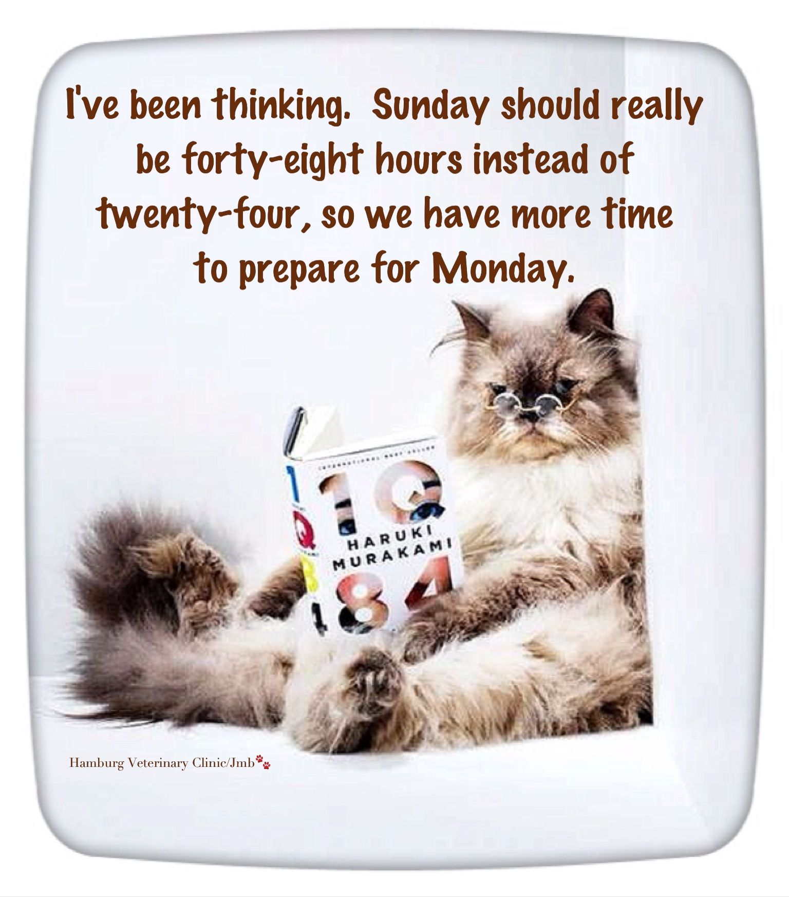 Sunday Humor Cute Dogs Sundays What Its All About Happy