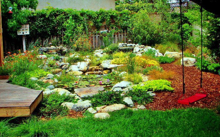 Great Drought Tolerant Garden Design With Picture Of Drought Tolerant Design  On Drought Design