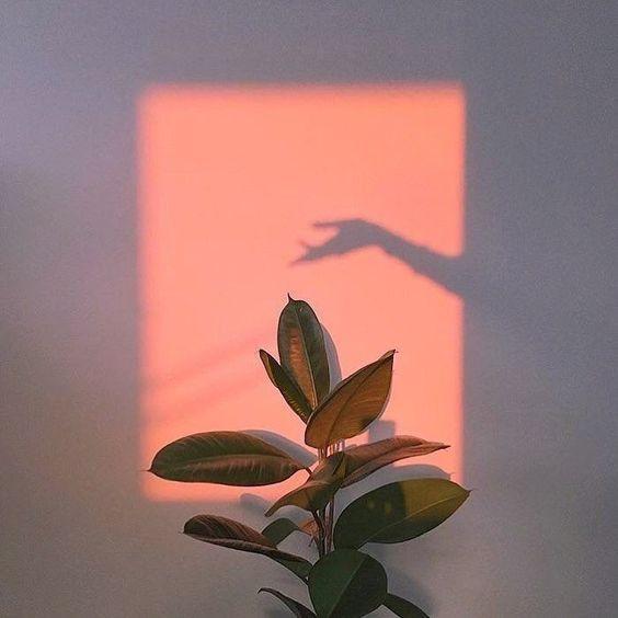 Dreamy uploaded by Angelique on We Heart It