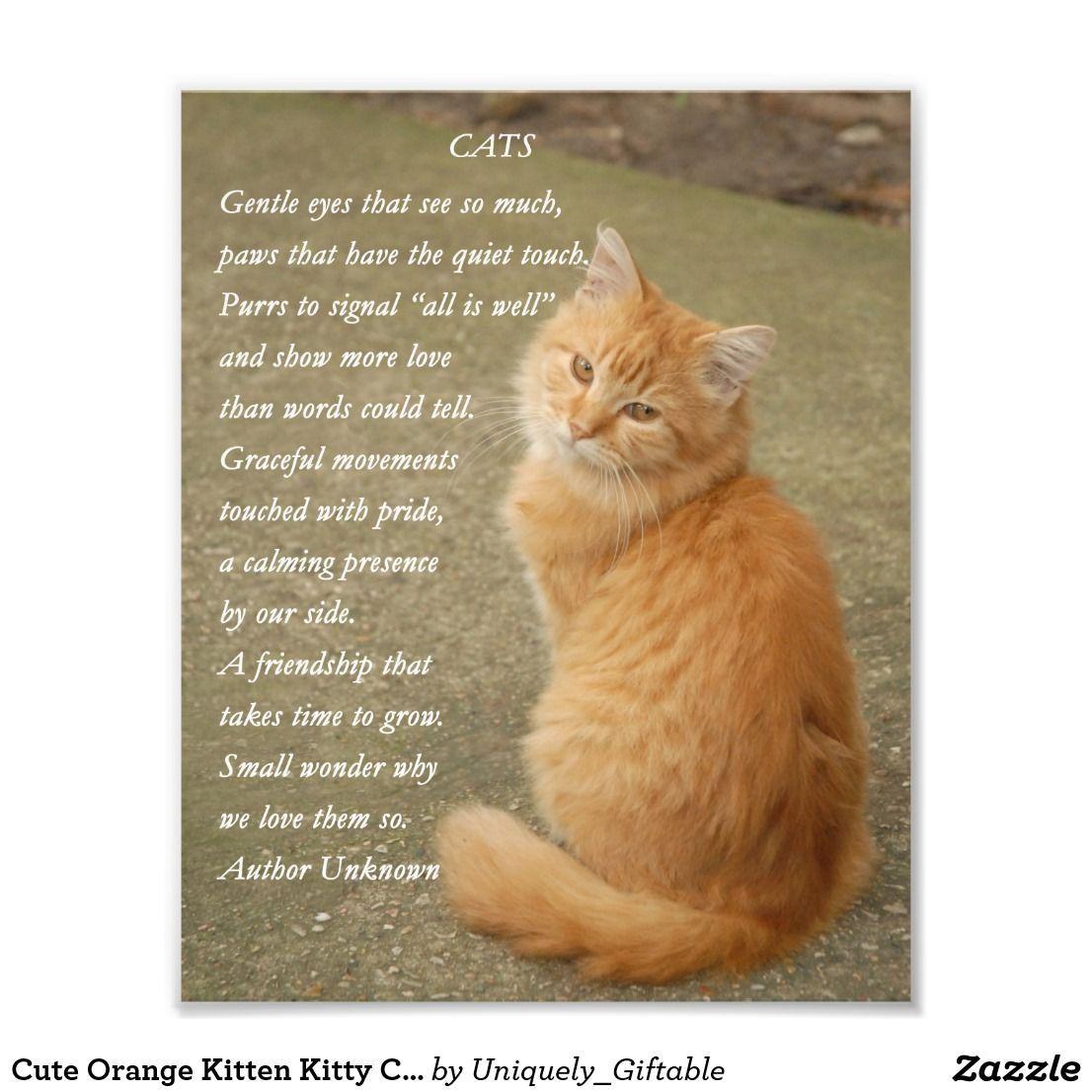 Cute Orange Kitten Kitty Cat Poem Photo Print Catsdiyfurniture Cat Poems Orange Kittens Kitten Photos