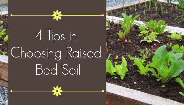 4 Tips in Raised Garden Bed Soil Preparation The