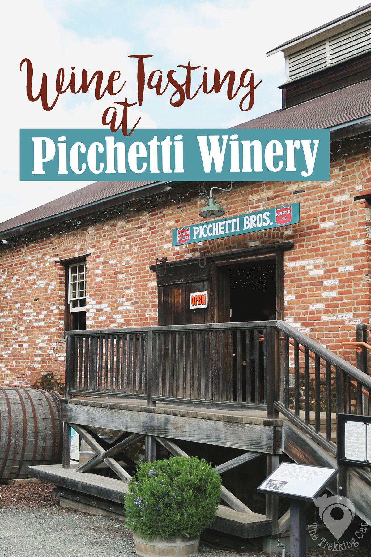 The Trekking Cat  Wine Tasting Picchetti Winery