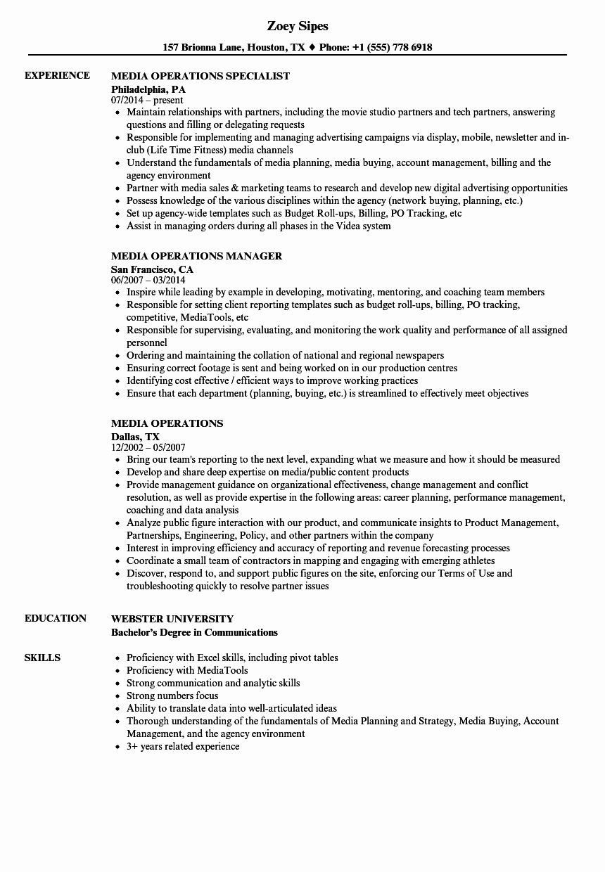 Excel skills resume examples beautiful 20 resume excel