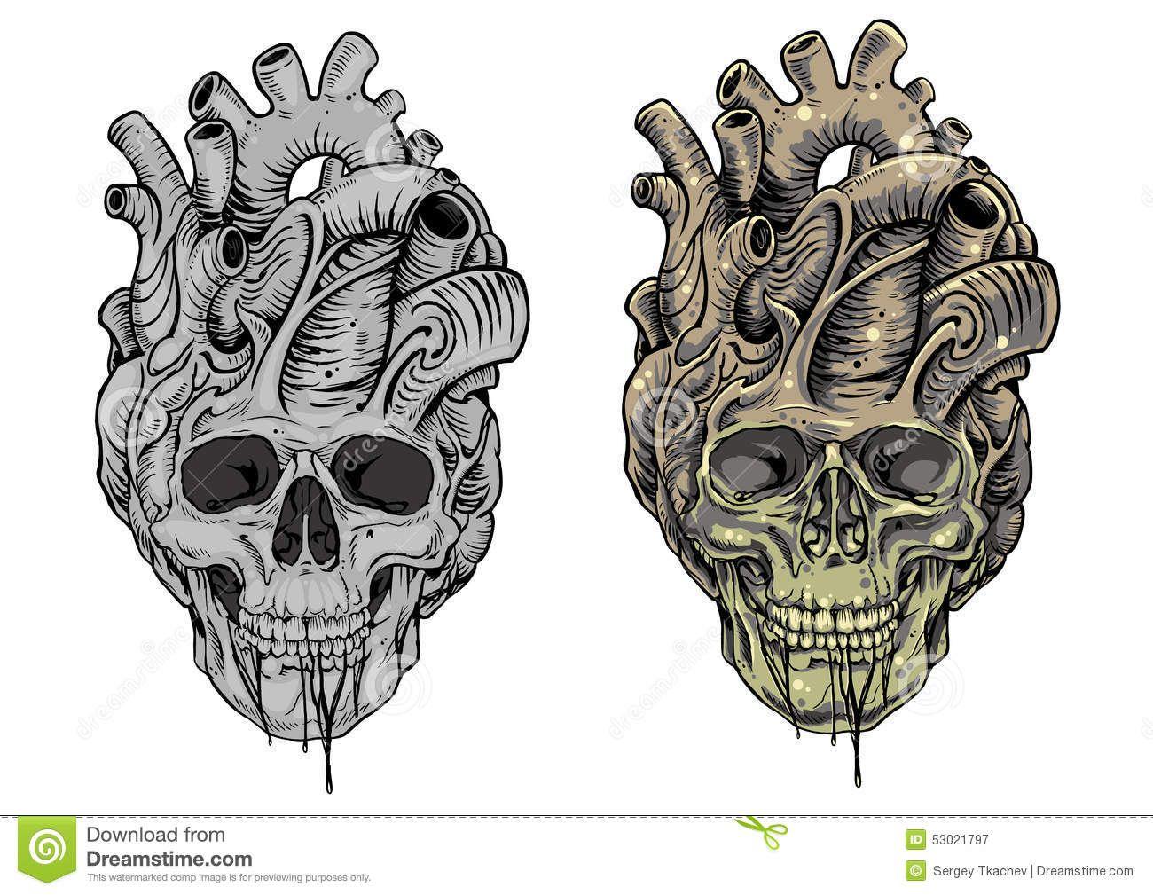 skull and heart designs skull heart stock illustration image