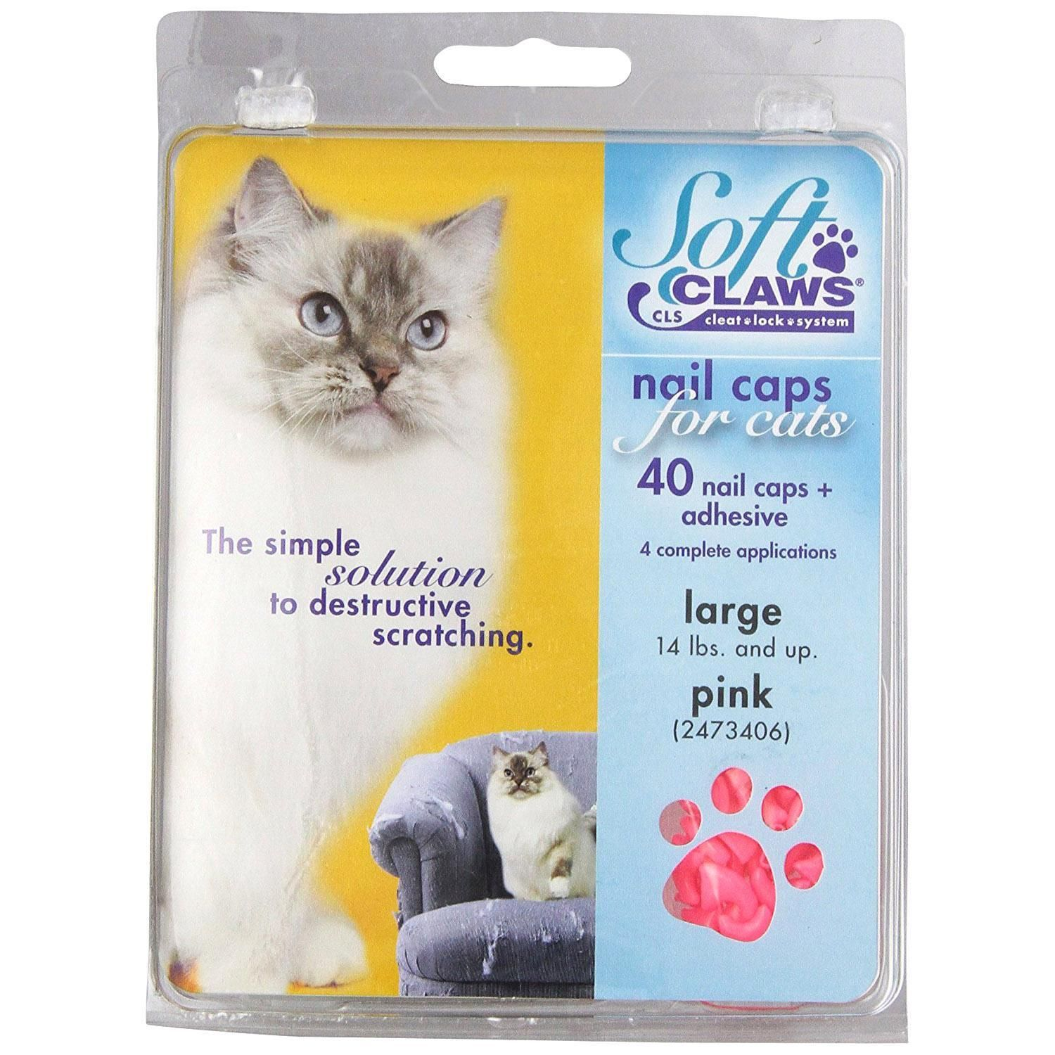 Check out this great offer I got! shopping Cat nail