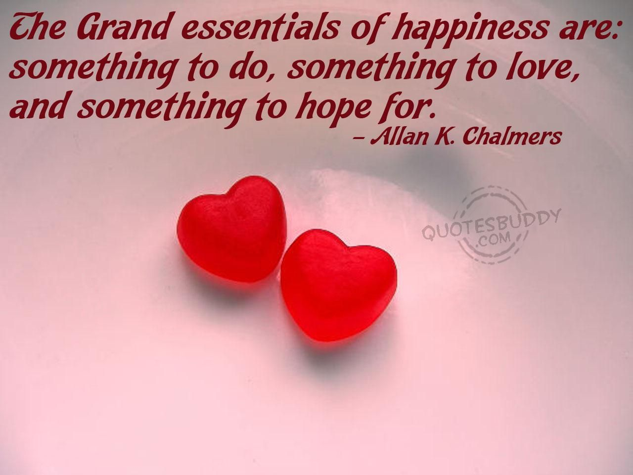Happiness Is Something To Love Cute quote about happiness describing that happiness is something to