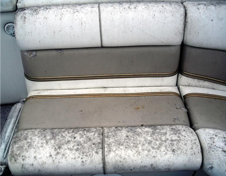 Cleaning Mildew off boat seats  E- GardenOutside Stuff