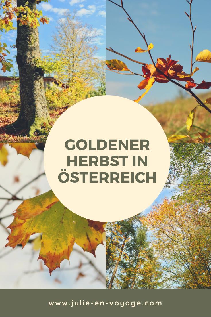 Fotoparade Goldener Herbst Meine Schonsten Herbstaufnahmen 2018 Im Zuge Der Fotoparade Von Cornelia Von Silver Travellers Herbst Wellnessreisen Herbsturlaub