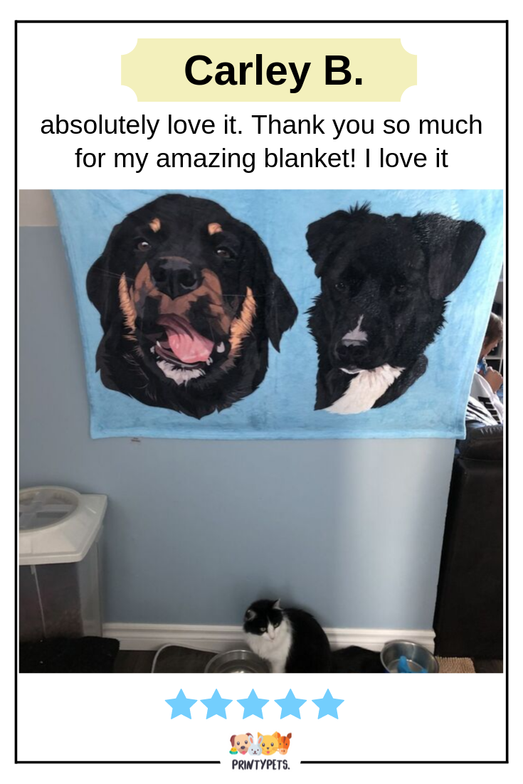 From Carley B Absolutely Love It I Accidentally Didn T Send The Extra 7 For The Second Dog But They Just Emailed Me To Let Me Know Very Kind Custom Pet Art