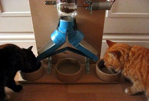Give me a doggie door & one of these, & I'd no longer need a dog sitter! ;) DIY pet feeding machines
