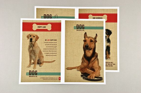 Dog Walking Brochure With Textured Background Template This Warm