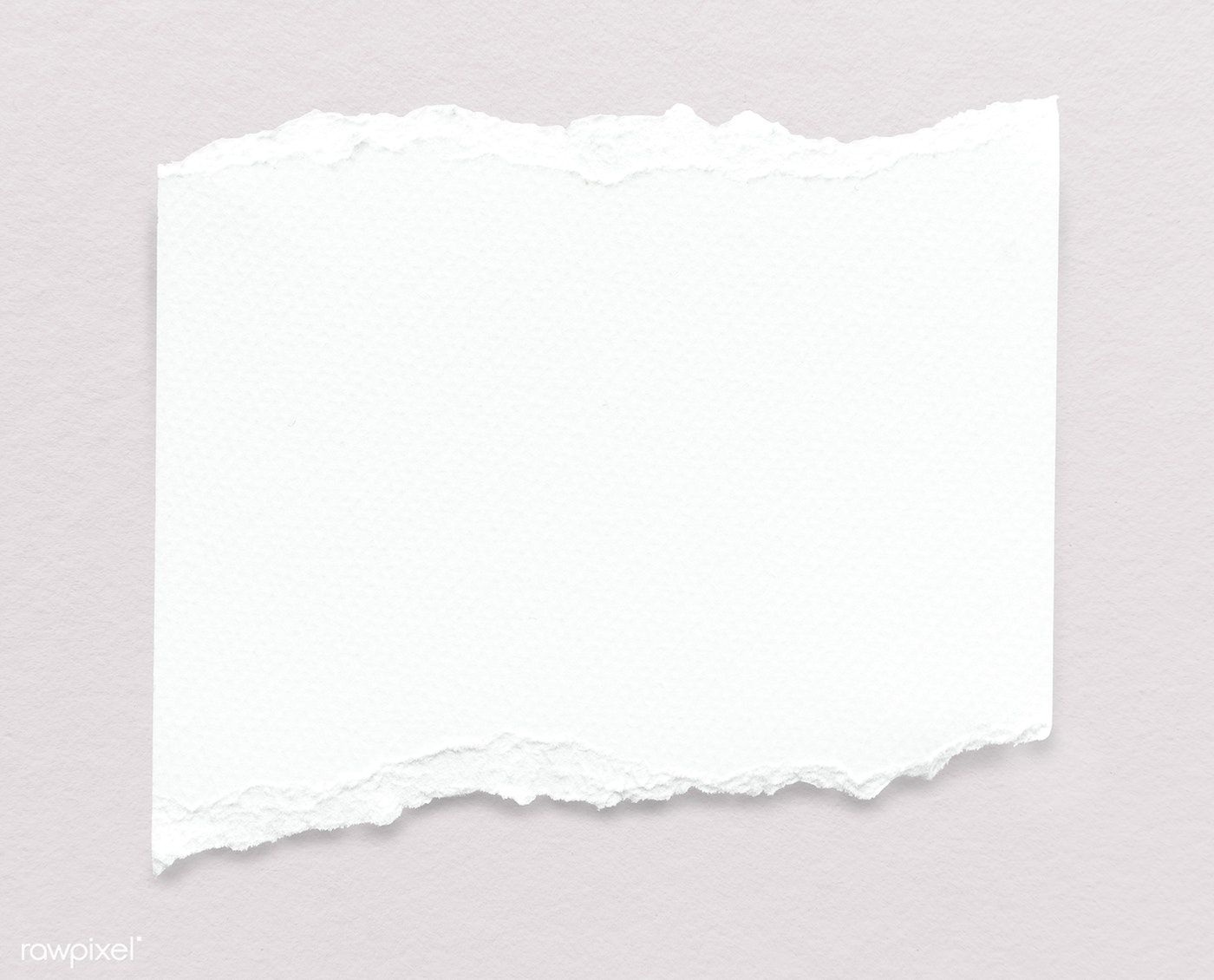 download premium psd of blank torn white paper template