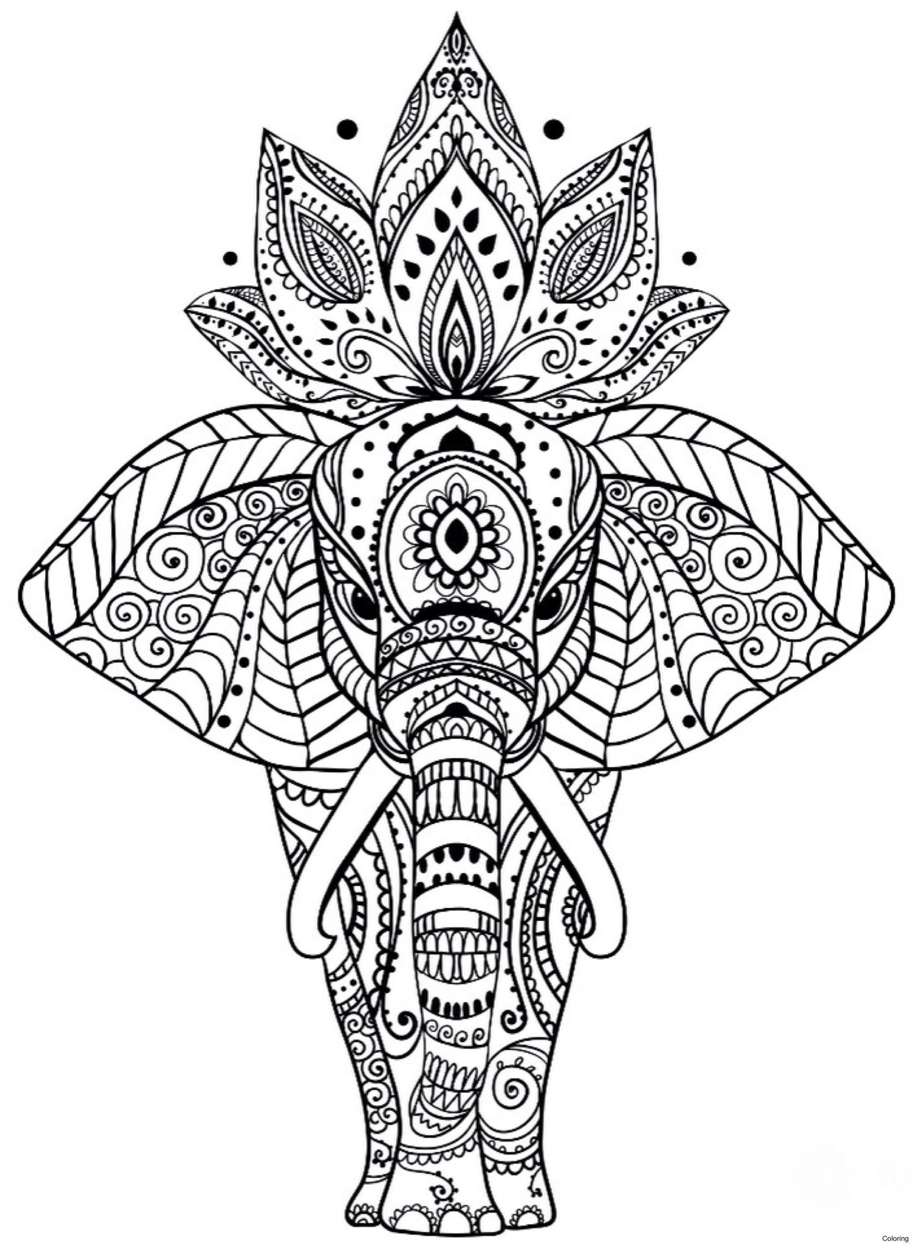 Mandala Online Coloring Pages Coloring Pages Coloring Sheets Kids Paint Line Princess Mandala Coloring Pages Elephant Coloring Page Mandala Coloring