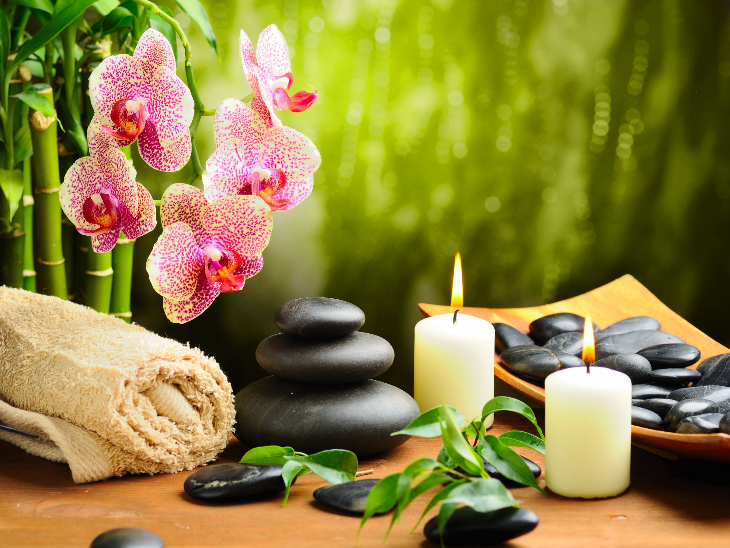 Barcelona Spa and Salon Fort Collins CO - Greeley CO | Spas ...