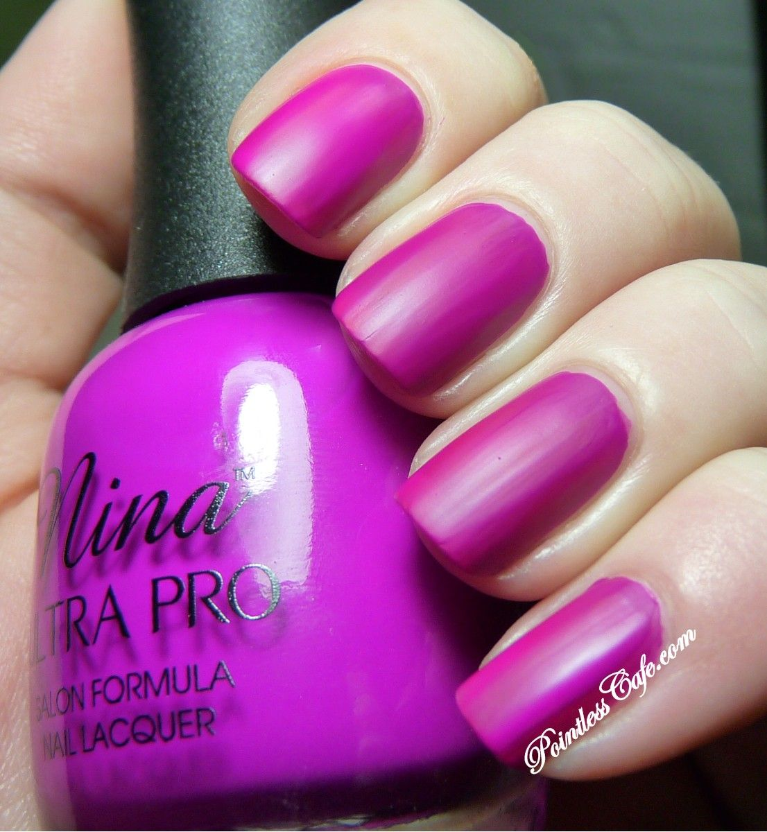 Nina Ultra Pro Punki Purple - Swatches and Review | Pointless Cafe ...