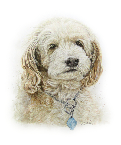 Please vote for this entry in Pet Portrait Challenge