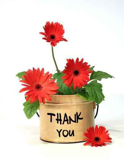 Pin By Mukhtiar Ali Baloch On Celebrate Thank You Flowers Thank You Pictures Thank You Images