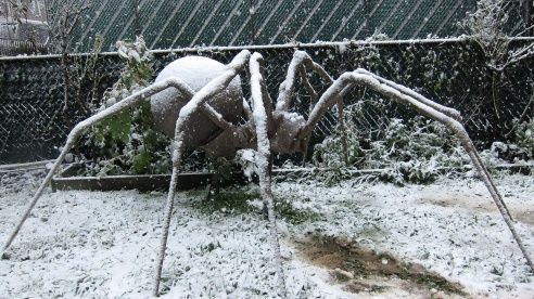 DIY Halloween Spider Fall  Halloween Decor Pinterest Giant - large halloween decorations