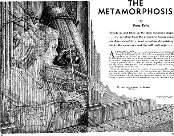 franz kafkas the metamorphosis essay Franz kafka`s the metamorphosis essay  franz kafka`s the metamorphosis nothing in the ample literature on kafka's the metamorphosis can change the fact that the central event in kafka's story is the transformation of gregor samsa into a hideous insect - franz kafka`s the metamorphosis essay introduction.