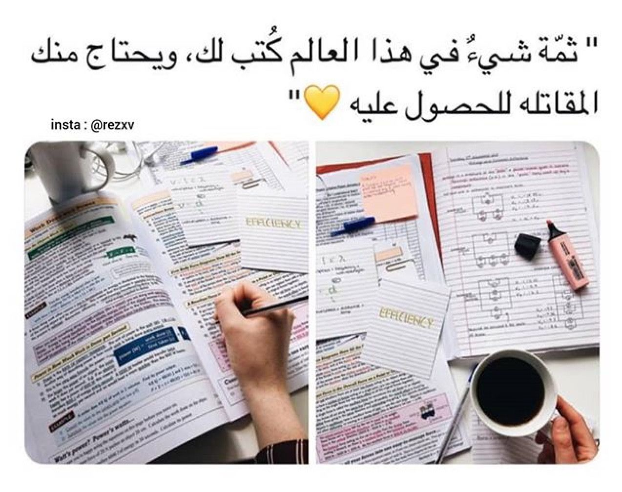 Pin By Deema Mohammad On It S Me Study Quotes Study Motivation Quotes Positive Quotes