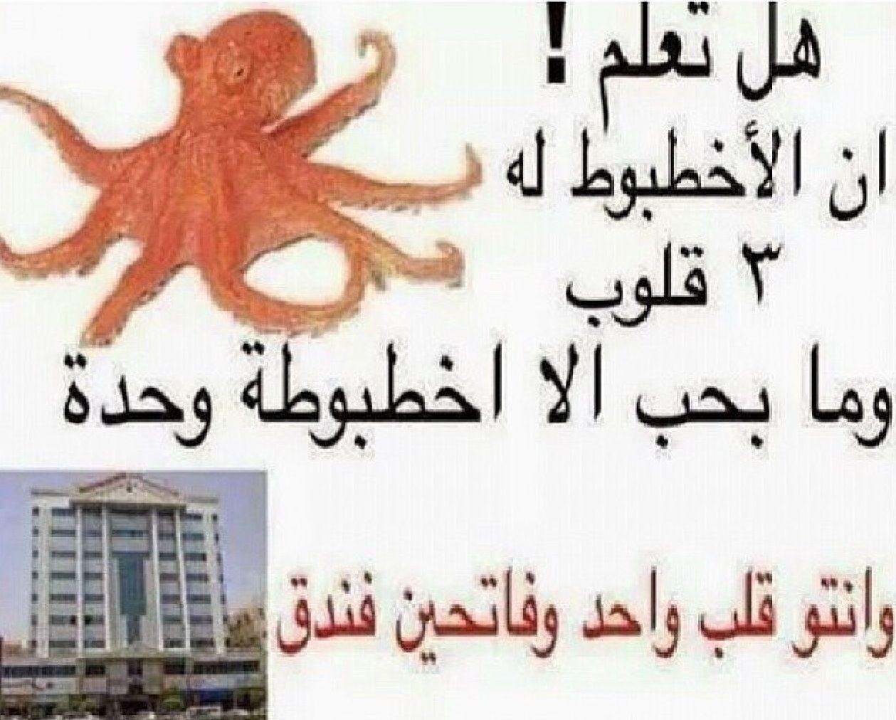 فندق ما شاء الله نكت Arabic Funny Jokes Arabic Jokes