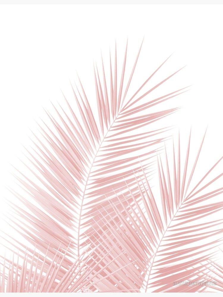 Blush Pink Palm Leaves Dream - Cali Summer Vibes #