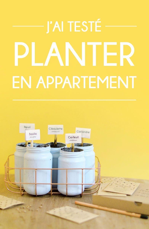 la box planter j ai test le jardinage en appartement. Black Bedroom Furniture Sets. Home Design Ideas