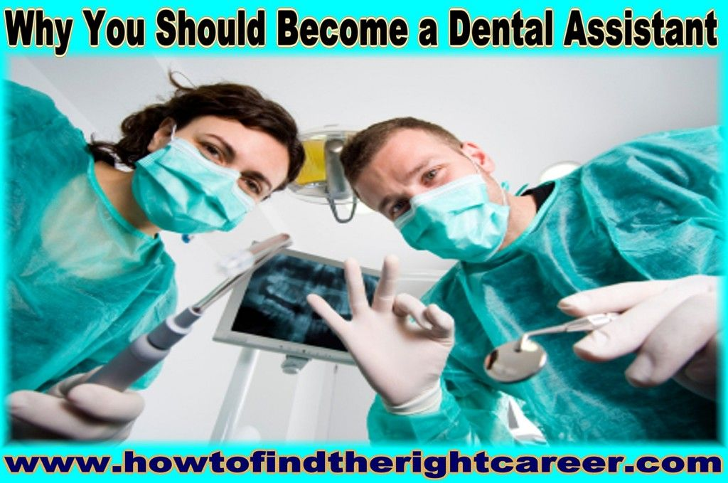 why become a dental assistant essay