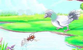 قصة الحمامة والنملة للاطفال مكتوبة Blog Posts Animals Bird