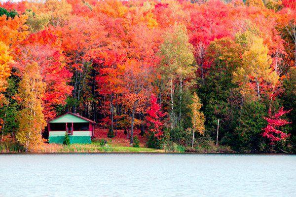 #fall  #Maine