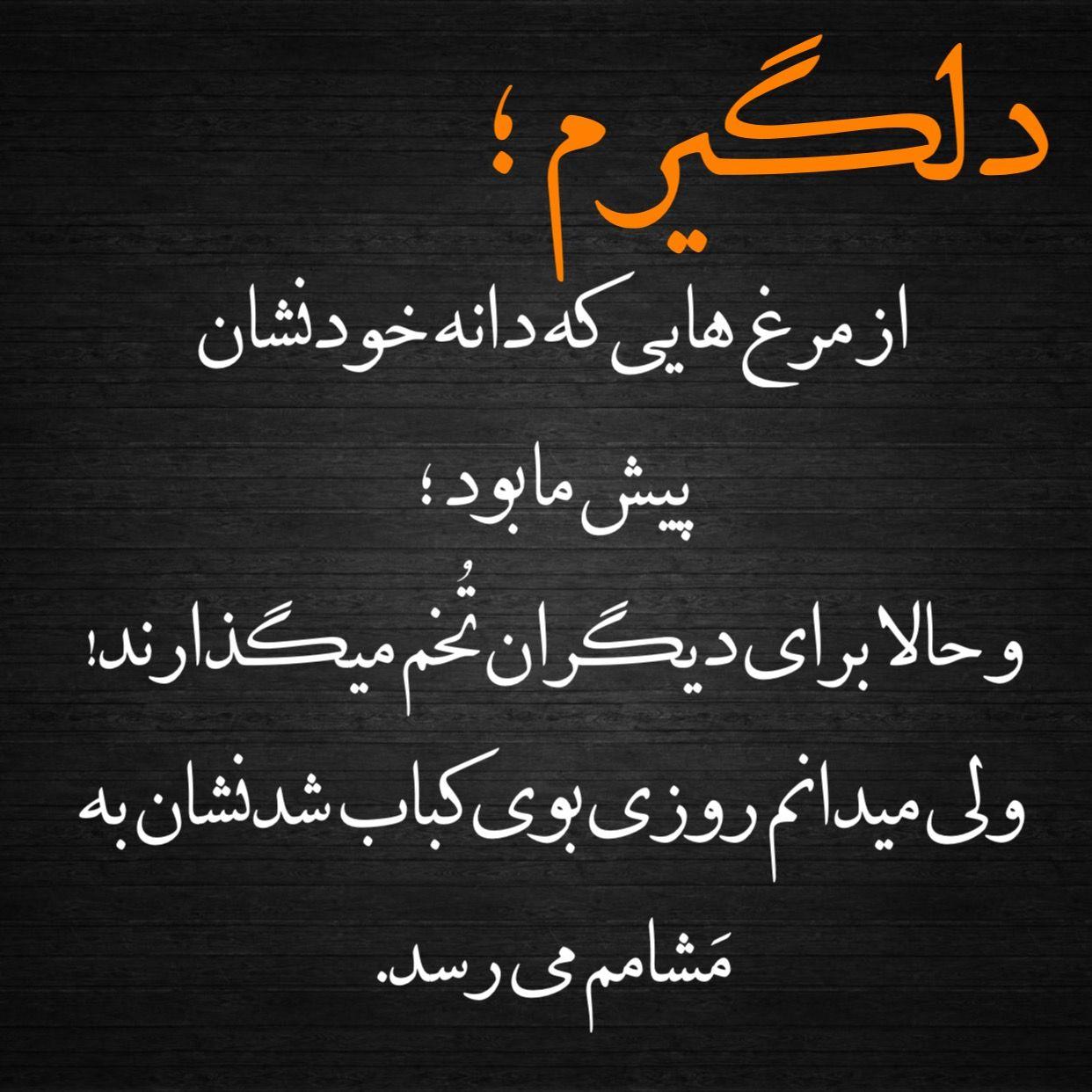 دلگیرم In 2021 Persian Quotes Feelings Quotes Quotes