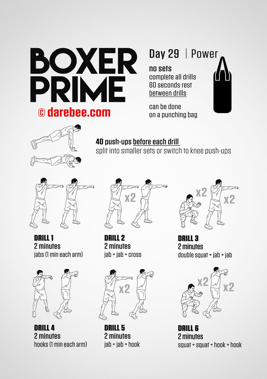 Boxer Prime 30 Day Fitness Program Fighter Workout Home Boxing Workout Boxer Workout