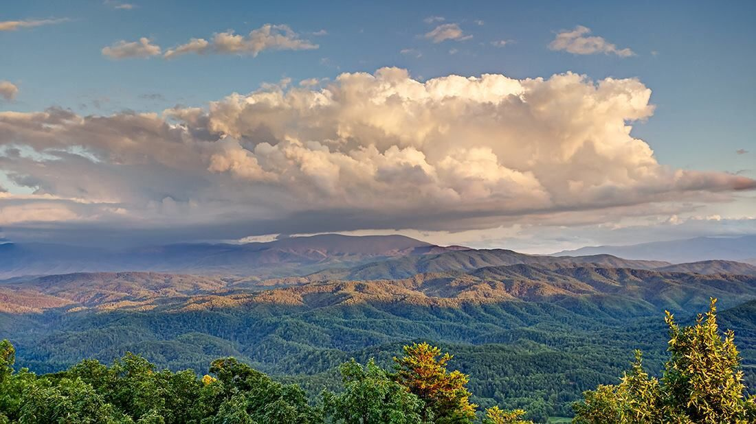 Get your Smokey MTS. on