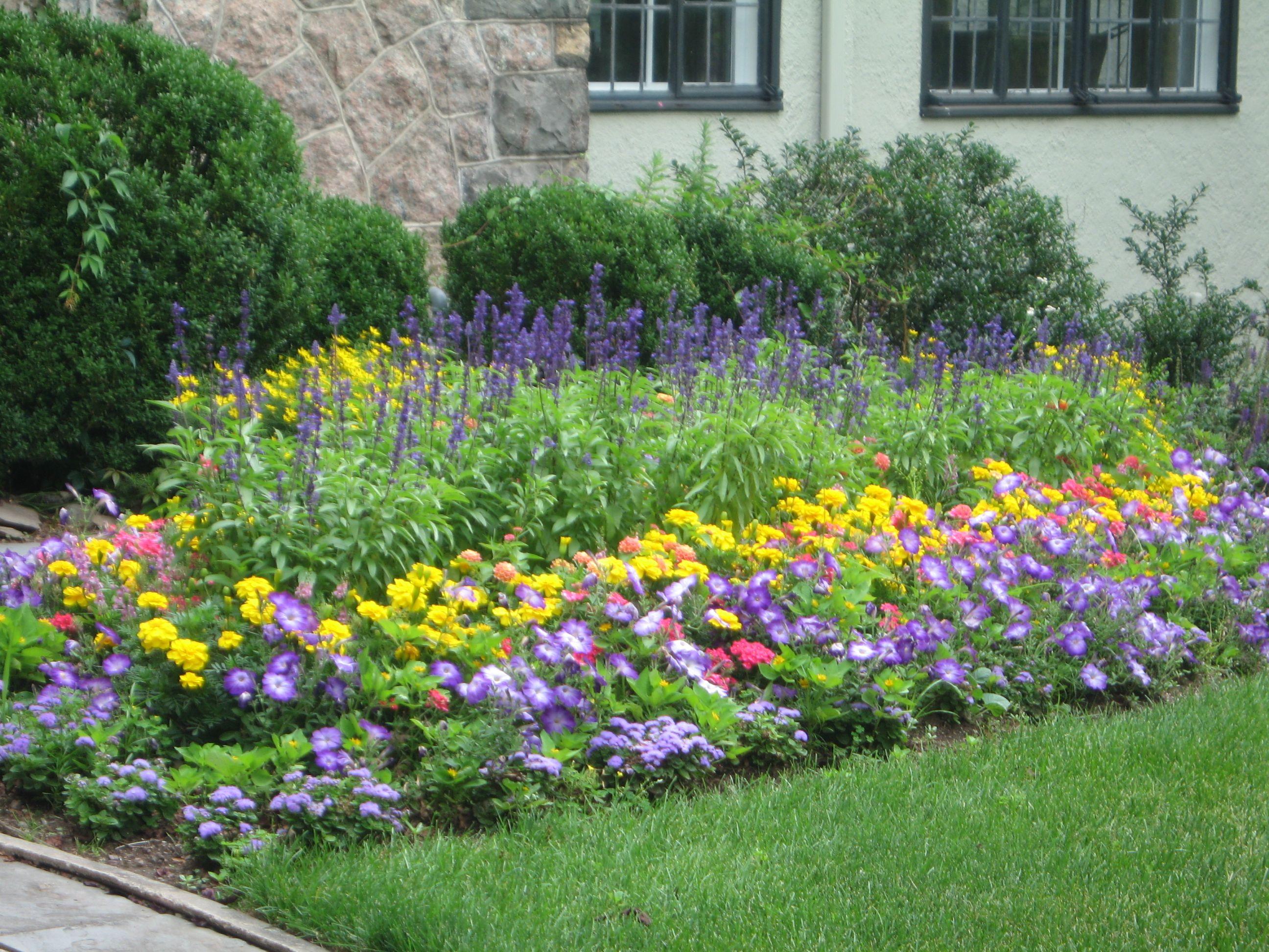Pin By Heather Simnitt On For The Garden Pinterest Gardens