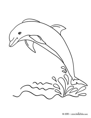 Dolphin to print out coloring book pages pinterest for Dolphin coloring pages to print out