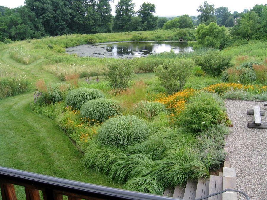 Creative Landscaping Design Company Prairie Gardens By E L A Backyard Landscaping Designs Prairie Garden Backyard Garden Design