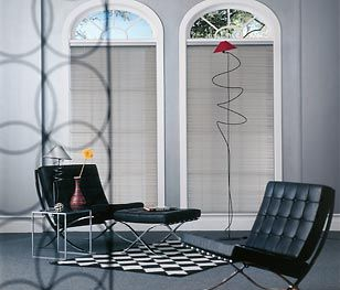 Aluminum Blinds adds architecture to this window's view.