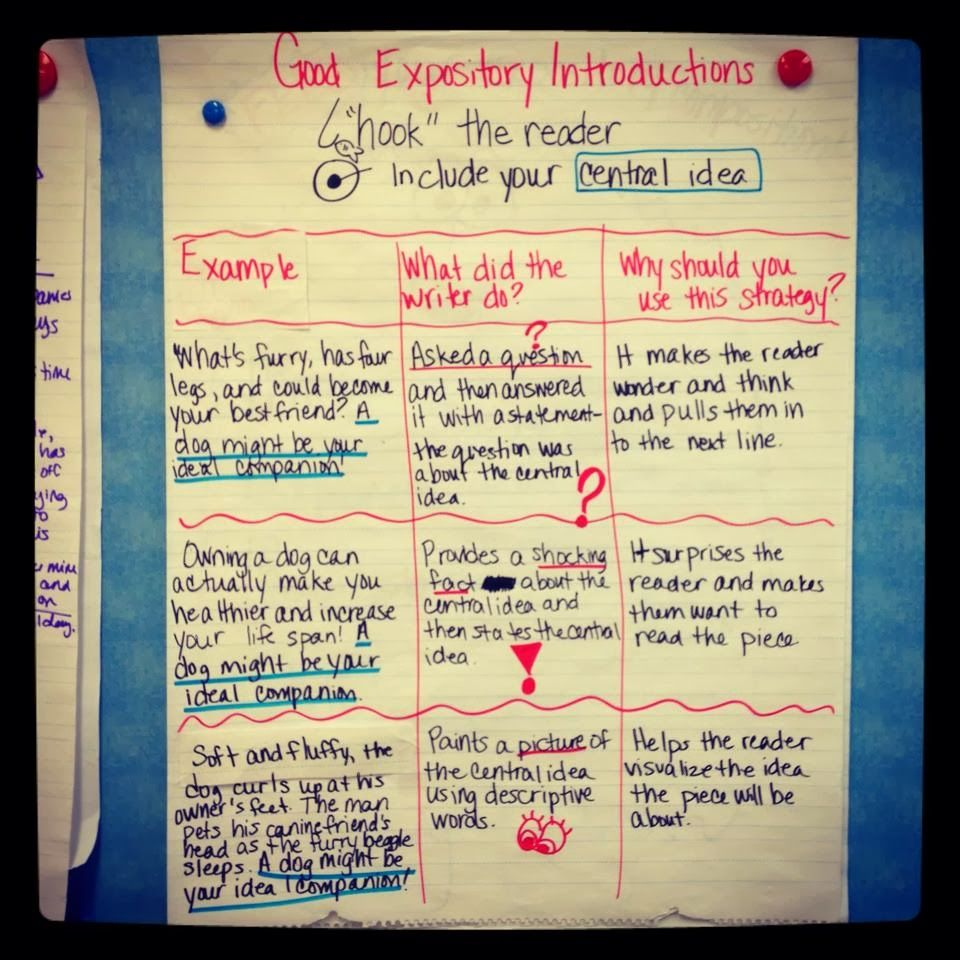good expository introductions it s time to let hi my is buzzing ms b good expository introductions it s time to let hi my is go three different types of expository introductions to teach